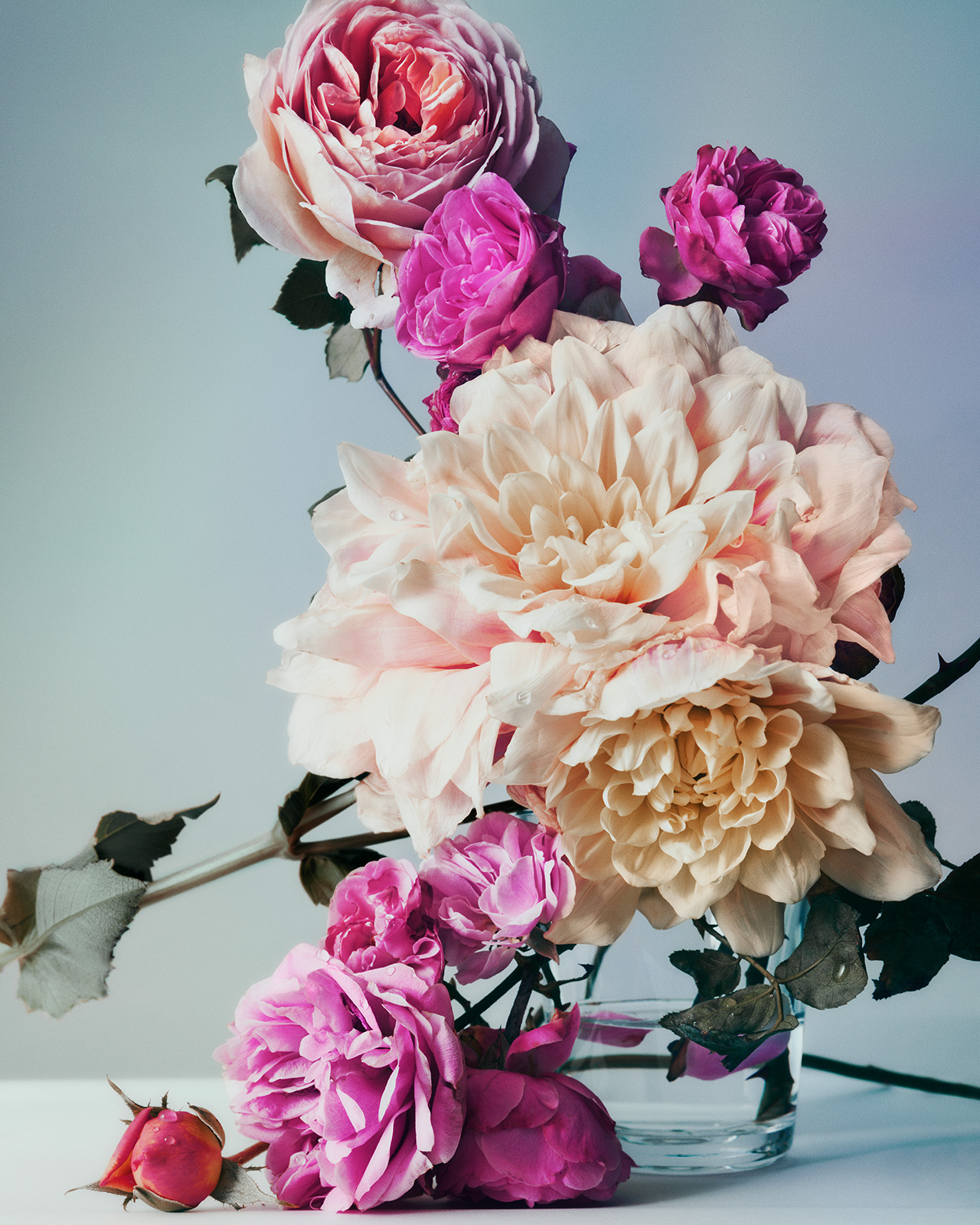 Frederik Lindstrm Studio Flowers For